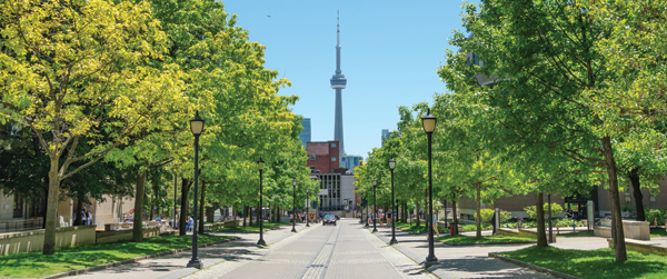 Neighbourhood in Toronto